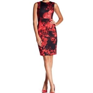 Calvin Klein Red Black Floral Scuba Sheath Dress